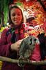 20161231-IMG_5042 (stringer8247) Tags: owl forest harajuku tokyo japan