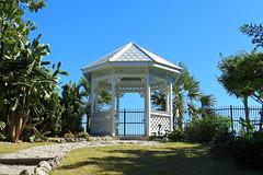 Key West (Florida) Trip 2016 1776Rif 4x6 alt (edgarandron - Busy!) Tags: florida keys floridakeys keywest keywestgardenclub higgsbeach