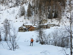 Val  Ferret (sharon quarterman I) Tags: valferret courmayeur valledaosta scifondo nordico crosscountryskiing winter snow sport ski december italy cold ice alps mountains valley frost nature outdoors