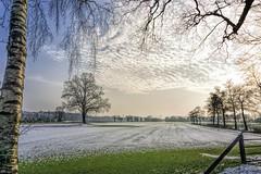 """Winters landschap (Wouter van Wijngaarden) Tags: landscape tree field winter winters woutervanwijngaarden dutch nederland thenetherlands holland provincieutrecht sunset maartensdijk dorpsweg nature trees snow sneeuw """"sonyflickraward sonyflickraward"""