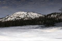Specchio riflesso (Valentina Conte) Tags: winter usa lake snow mountains ice water america lago rebel mirror reflex neve yellowstone icy acqua inverno montagna uniti sl1 ghiaccio riflesso stati canon100d
