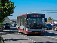 [Buses in Beijing] Youngman Neoplan JNP6120G-1 (1st-batch, 2007) BPT #83584 Line 537 at Dongsanqi (tonyluan1990) Tags: beijing  publictransport citybus  lowfloor  dieselbus  dongsanqi beijingpublictransportholdingsltd    youngmanneoplan beijingpublictransport jnp6120g1 pingxifu