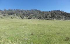Lots 156 & 157 Tarrants Gap Road, Wyangala NSW