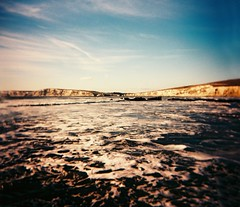 Low tide at Compton Bay (oblivion head) Tags: film holga crossprocessed isleofwight comptonbay