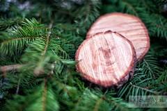 Christmas Tree Parts - 14-Dec-2016 (Cesar - 32photos) Tags: nikond800 d800 nikon nikkor nikkor2470mmf28 christmas 2016 christmastree merrychristmas christmas2016 jolly snow winter northpole
