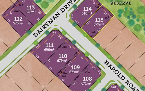 Lot 115 / 42 Rees James Road, Raymond Terrace NSW 2324