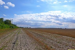 Проехали большое и длинное село Щучье. Дороги вдоль Битюга затопило. Пришлось набирать высоту. Единственную дорогу вдоль полей перепахал трактор, поэтому поперли напролом. Фигли делать, ведь это же наш стиль.