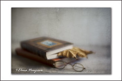 bookmark (Elena Nosyreva) Tags: book books bookmark spectacles glasses leaf fall stilllife