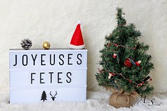 Joyeux  noel (Aline Sprauel Photography (AS photos)) Tags: merrychristmas noel joyeuxnoel photography alinesprauel canon photo photographe