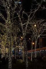 Lights at 1251 Avenue of the Americas plaza, New York (mattk1979) Tags: newyear christmas winter manhattan newyork city unitedstatesofamerica usa night lights neon 1251avenueoftheamericas exxonbuilding tree
