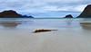 emptiness on the beach (Urs Walesch) Tags: lofoten beach sea ocean norway sand water waves seaweed