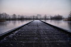 Pier towards the city (Dannis van der Heiden) Tags: outdoor pier serene building leusden amersfoort netherlands ice winter beforesunrise cold sky slta58 tamron1750mmf28 deschammer schammer fog mist flat
