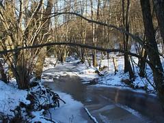 OI000386 (GKRSP55) Tags: dauerfrost söterbach naturparksaarhunsrück