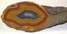 Agate (Borden Formation, Lower Mississippian; eastern Kentucky, USA) 9 (James St. John) Tags: agate nodule nodules geode geodes quartz chalcedony borden formation kentucky mississippian