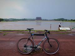 A Hard Rain's A Gonna Fall. Nara, Japan. (kinkicycle.com) Tags: rain bicycle japan japanese cycling bikes continental bicycles nara surly crosscheck heijo