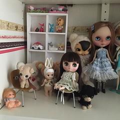The shelf left #rilakkuma #blythe #Blythedoll #customblythe #toysfield #toysfieldkuma #middie #middieblythe #middiecustom #amigurumi #babiedeer #toy #doll #hellokitty