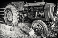 Tractor (www.chriskench.photography) Tags: england unitedkingdom gb fujifilm agriculture hertfordshire herts lamiaceae xt1 ickleford mirrorless hitchinlavender kenchie chriskenchphotography wwwchriskenchphotography