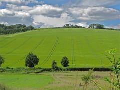 Lush (Deepgreen2009) Tags: green sussex farm hills lush southdowns