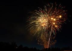 Fireworks (ApurveBhargava) Tags: fireworks independenceday bellevue bellevuepark