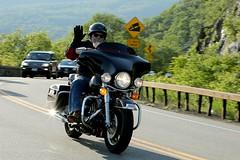 Harley-Davidson 1506076435w (gparet) Tags: bearmountain bridge road scenic overlook motorcycles goattrail goatpath windingroad curves twisties motorcycle outdoor sport vehicle bike wheel motorcyclist