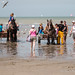 "2015_08_07_Paardenvissers_Oostduinkerke-88 • <a style=""font-size:0.8em;"" href=""http://www.flickr.com/photos/100070713@N08/20216090888/"" target=""_blank"">View on Flickr</a>"