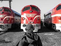 Nohab Fan (boti_marton) Tags: nohab m61 610 class610 máv mávnosztalgia tapolca hungary magyarország europa city cityscape fan railfan bw blackwhite panasonic dmc lz20 lumix