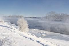 01120043b (geelog) Tags: alberta bowriver calgary fishcreekpark fog ice water winter ab canada