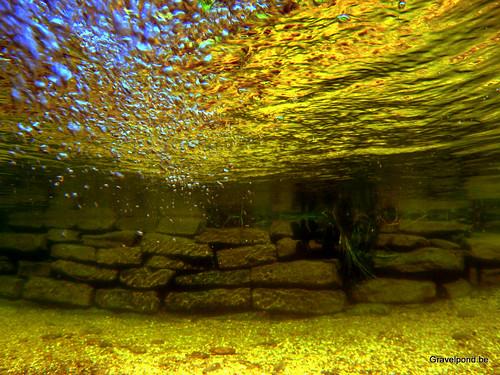 Plunge pool , kleine zwemvijver