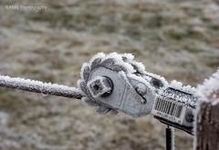 It's all ice ! (René Maly) Tags: renémaly minolta rd3000 vectis vline macro 3550 50mm ice snow frozen