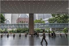 "Singapore 1007 (Fermin Ezcurdia) Tags: singapur singapore ""sudeste asiático"" skyline ""marina bay sands"" ""maryba bay"" chinatown ""barrio indio"" barrio musulman"" ""bufaflo road"" ""clarke quay"" ""orchard ""garden by ""sultan mosque"""