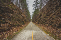 Lonely Road (KD Robinson) Tags: view georgia color impressive sony trees roadlesstraveled road beautiful travel forest hiking trail outdoors green dramatic a7r tall detail rockmart unitedstates us