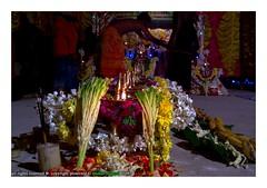 ayyappa pooja (mohan mukesh) Tags: aldur ayyappa pooja latesh swami chikmagalur karnataka india devotion divine flower flora funna nokia808