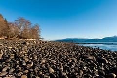 10  _DSC2365 (Betty Johnston) Tags: sointula malcolm island bc british columbia west coast