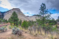 Checkerboard Mesa (Herculeus.) Tags: 2016 bouldersstonerocks cliffs clouds country day erosion evergreens fall landscape landscapes ledge mesa mountains oct outdoor outdoors outside scrub sky trees ut zionnp