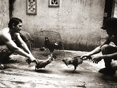 Ho Chi Minh City. (Devlin Cook) Tags: m6 elmarit 28mm asph leica hc110 pakon f135 mono blackandwhite street hochiminh saigon vietnam candid analogue analog grain film