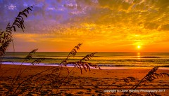 The Beginning (T i s d a l e) Tags: tisdale thebeginning sunrise dawn coast outerbanks december 2016 easternnc