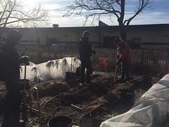 Soil Start Farm 12.21.16
