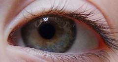 """Das Auge. Die Augen. Das Auge eines Menschen. In der Mitte ist die Pupille. Um die Pupille herum befindet sich die Iris. • <a style=""""font-size:0.8em;"""" href=""""http://www.flickr.com/photos/42554185@N00/32311504804/"""" target=""""_blank"""">View on Flickr</a>"""