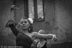 """Arte flamenco • <a style=""""font-size:0.8em;"""" href=""""http://www.flickr.com/photos/133275046@N07/17902447254/"""" target=""""_blank"""">View on Flickr</a>"""