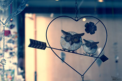 Dentro de un mismo corazón [Explore] (ángel mateo) Tags: ángelmartínmateo ángelmateo füssen baviera alemania corazón búho amor flecha fussen bavaria germany arrow love heart owl bayern deutschland ♡