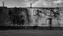 Fifth Street Warehouse (Explored) (John Hollingshead) Tags: blackandwhite abandoned canon graffiti decay abandonment dayton decaying 6d abandonedfactory daytonohio abandonedwarehouse canon6d