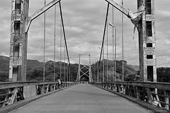 Puente de Purificacin a Prado (Tato Avila) Tags: naturaleza ro monocromo colombia campo blanconegro tolima