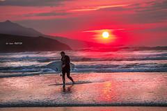 El surfista (Jabi Artaraz) Tags: jartaraz zb euskoflickr surfista zierbena playadelaarena basquecountry euskalherria paysbasque atardecer sunrise sunset contraluz aplusphoto superaplus wow