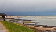 wenig Wasser in der Frde (harrykretzschmar) Tags: strand natur kiel sturm frde falckenstein