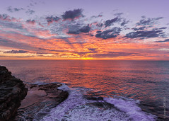 Another day, another secret sunrise. (aaron cliff) Tags: beach sunrise australia wideangle nsw newsouthwales brightonlesands