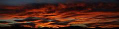 Sunrise 11 16 16 #50 Panorama (Az Skies Photography) Tags: sun rise sunrise morning dawn daybreak sky skyline skyscape clouds cloud red orange yellow gold golden salmon black canon eos rebel t2i canoneosrebelt2i eosrebelt2i rio rico arizona az riorico rioricoaz arizonasky arizonaskyline arizonaskyscape arizonasunrise november 16 2016 november162016 111616 11162016