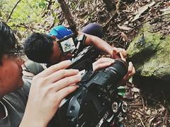 #Filming scorpion #documentary