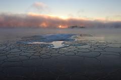 Morning sun peeking through the seafog and cracked ice (KaarinaT) Tags: ice seafog seamist sea sun peekaboosun freezing crackedice freezingcold freezingcoldweather 17degreescelsius helsinki kaivopuisto finland morning dawn winter