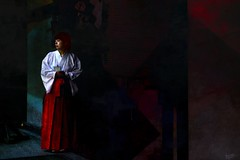 Thoughts of (Bamboo Barnes - Artist.Com) Tags: japan photo painting light shadow digitalart bamboobarnes miko shrine traditional history red white blue black orient
