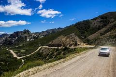 Patagonia Argentina (Rober Lucero) Tags: patagonia argentina ruta40 landscape paisaje sur mountain tree lake
